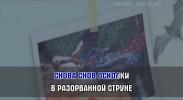 TOP of the HITs 2016. Универсальный караоке Диск DVD Видео