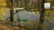 Легенды Русского Шансона 2010. 50 песен Шансона для любого DVD Видео Караоке