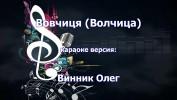 Олег Винник Караоке на DVD Купить, Скачать для любого DVD